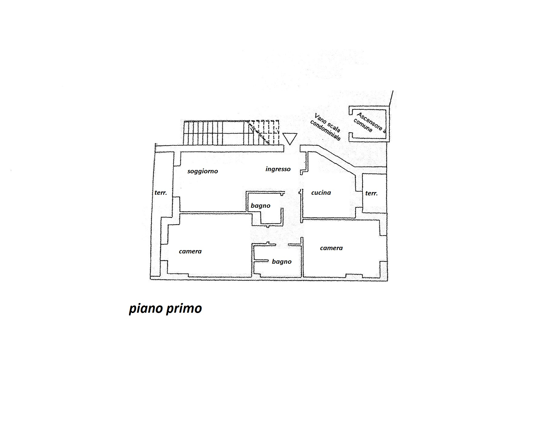 Planimetria 1/1 per rif. R/3364