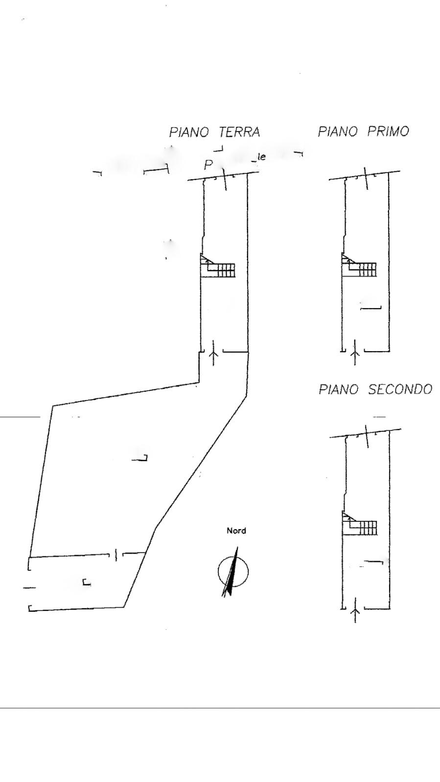 Planimetria 1/3 per rif. trc sdona 179