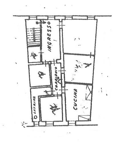 Planimetria 1/1 per rif. ap lucca 300