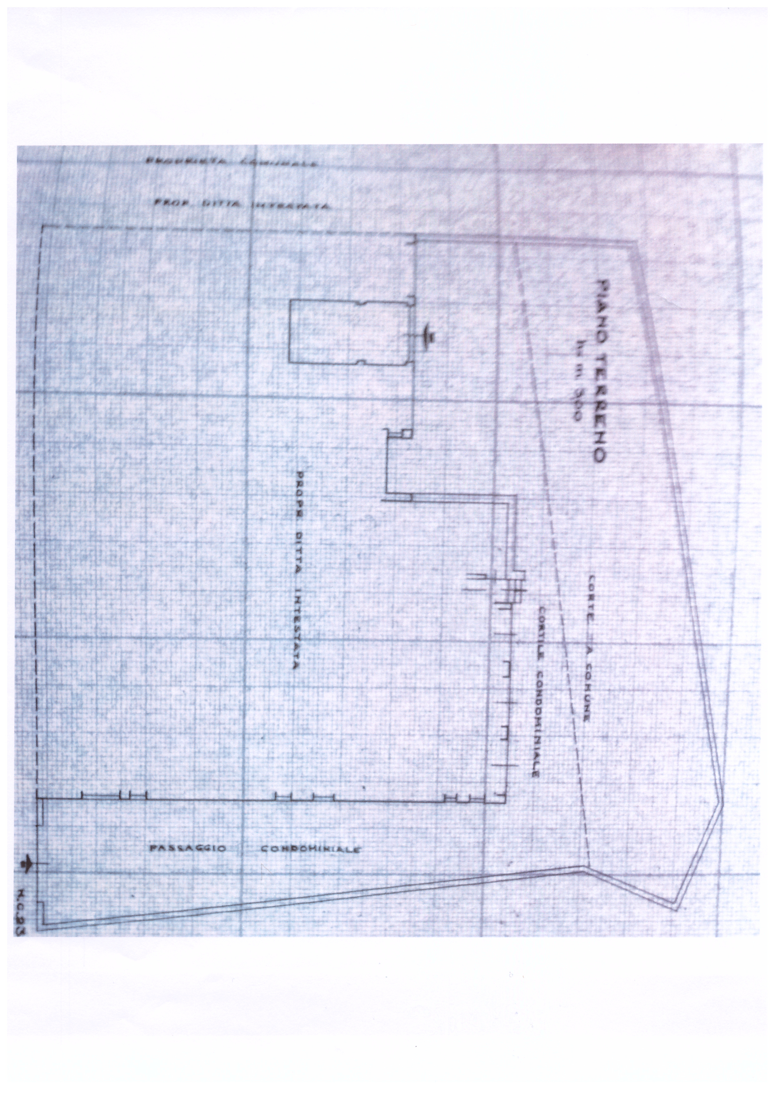Planimetria 3/3 per rif. PIOPPINI