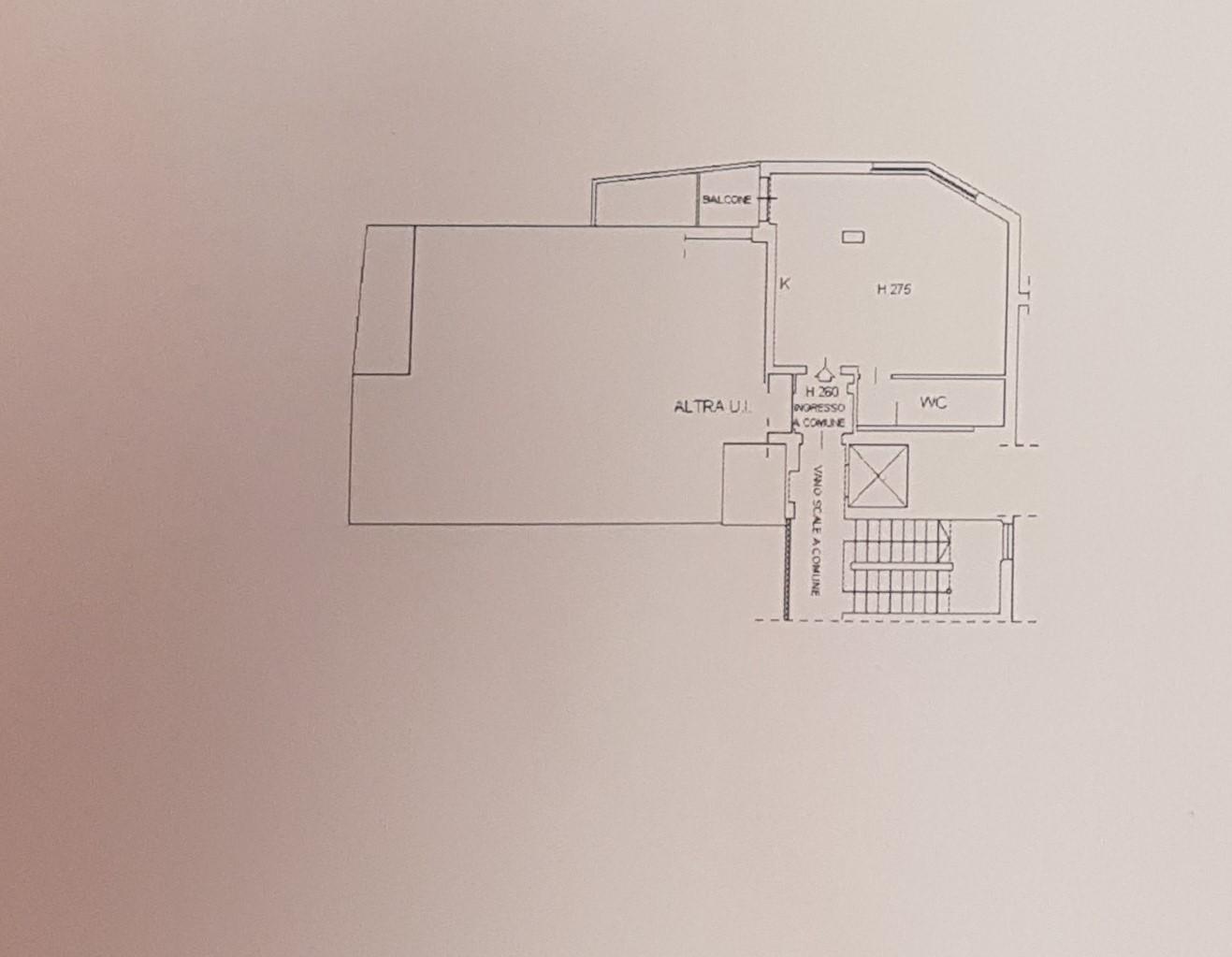 Planimetria 3/3 per rif. FEDI 145000