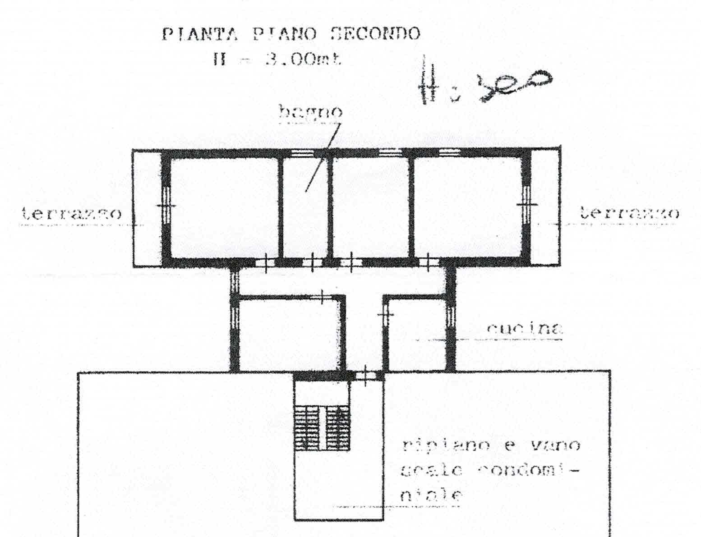 Planimetria 1/1 per rif. 2999