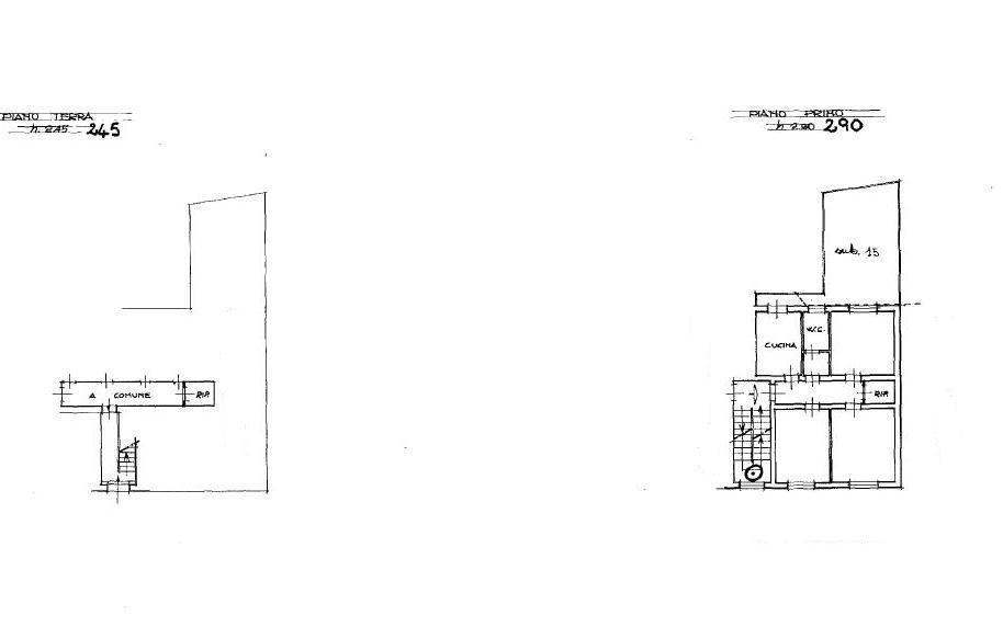 Planimetria 1/1 per rif. 116