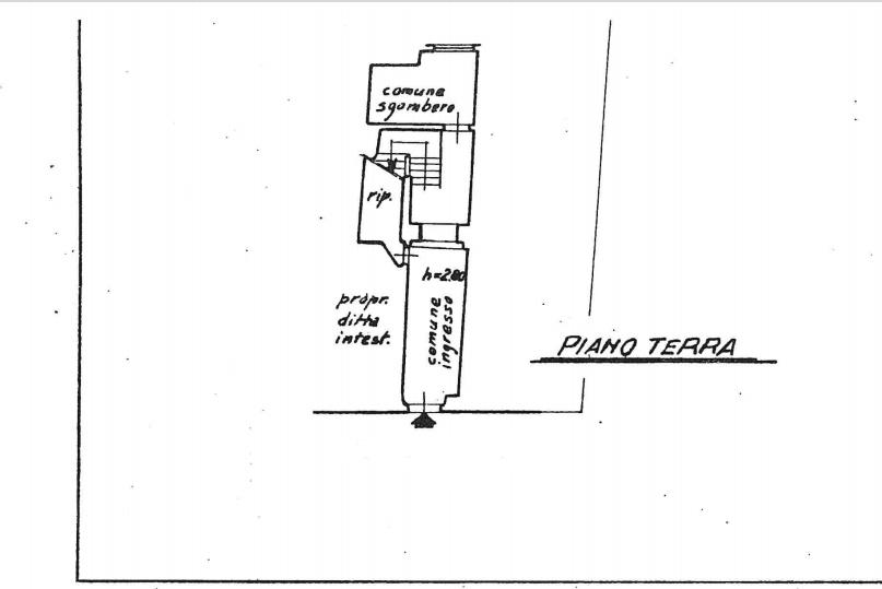 Planimetria 3/4 per rif. 550