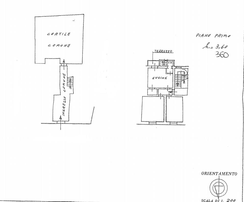 Planimetria 1/1 per rif. 556