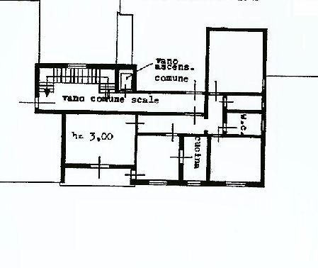 Planimetria 1/1 per rif. IA4996