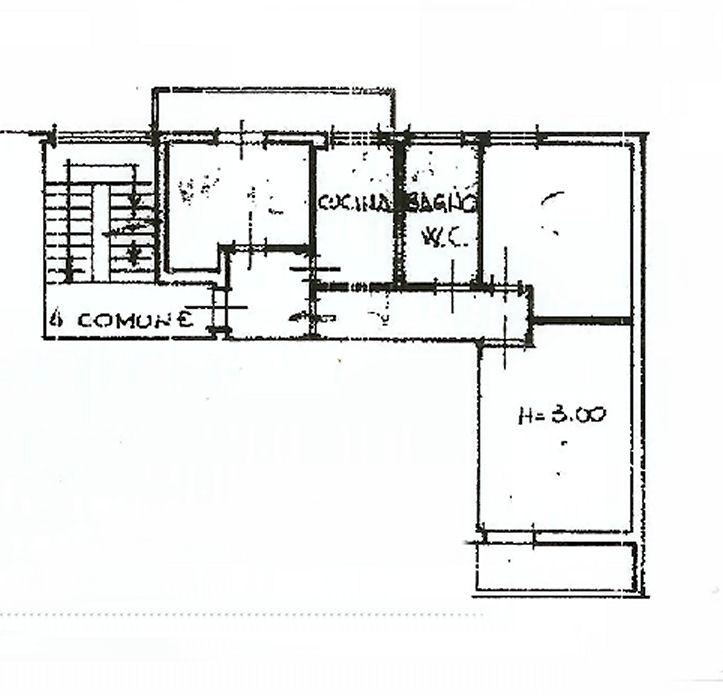 Planimetria 1/1 per rif. ia5337
