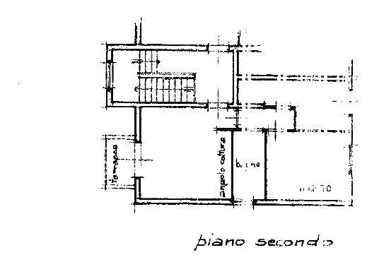 Planimetria 1/1 per rif. IA5678