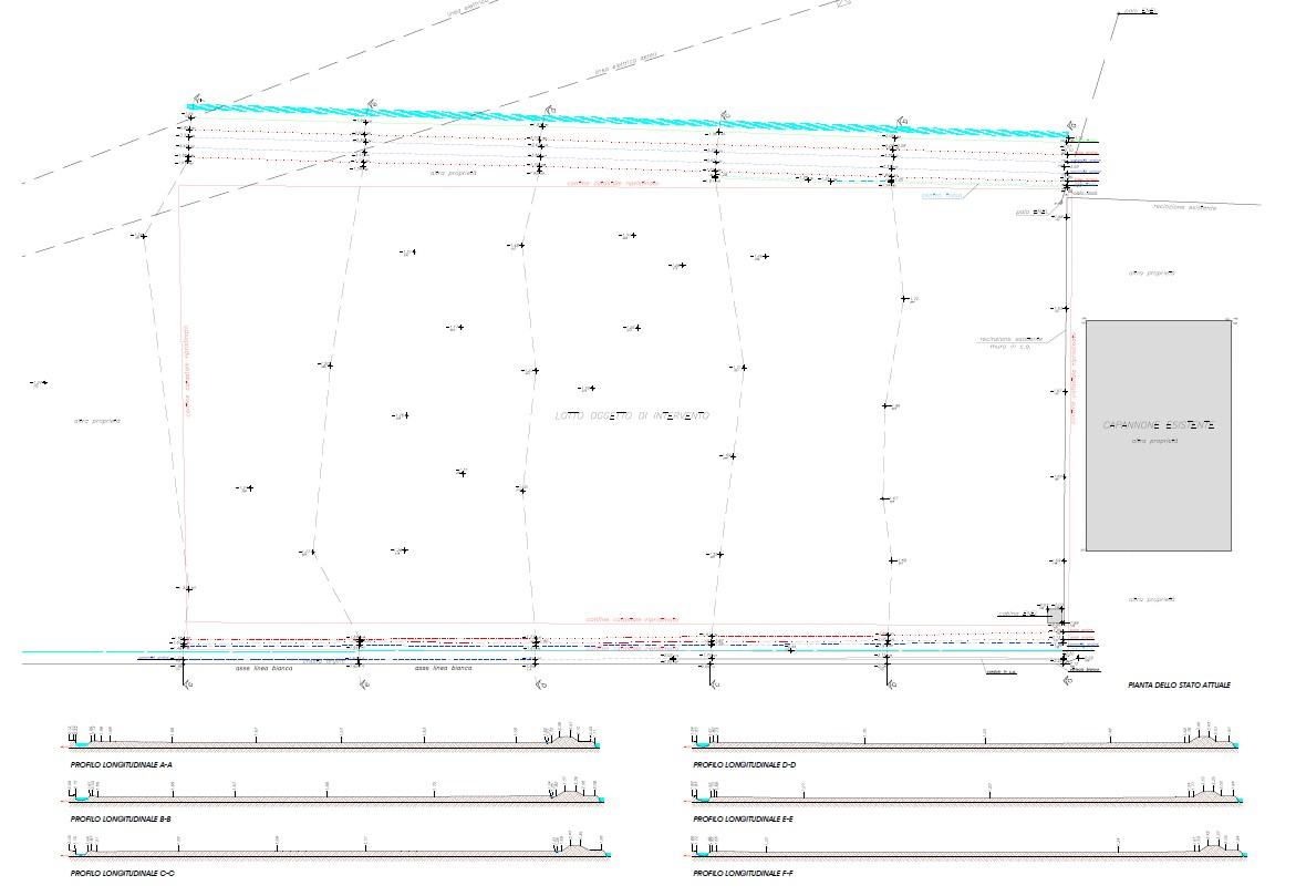 Planimetria 1/1 per rif. 5009D