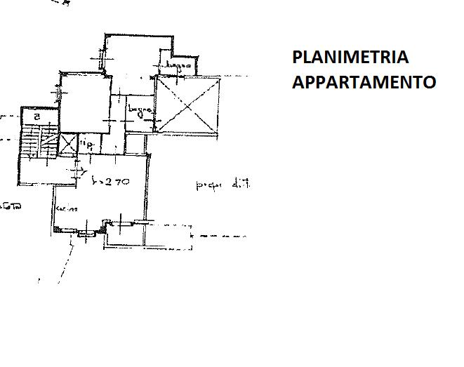 Planimetria 1/1 per rif. 299