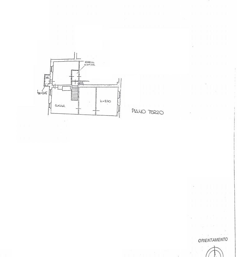 Planimetria 1/1 per rif. 4491