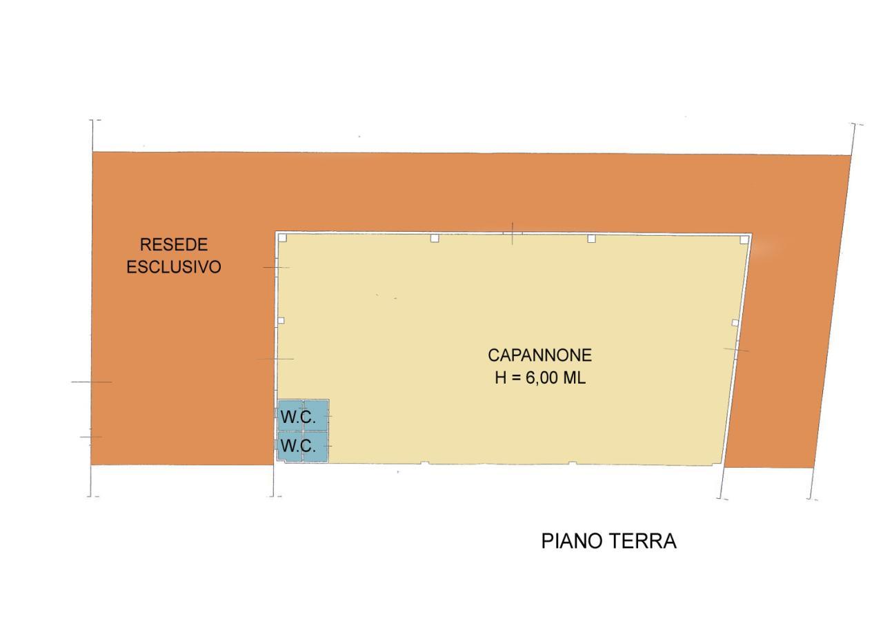 Planimetria 1/1 per rif. B196