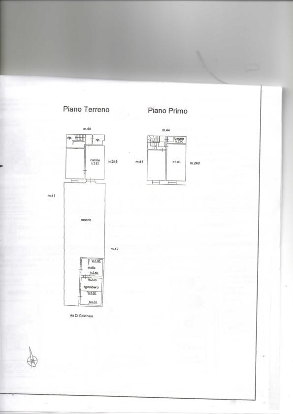 Planimetria 1/1 per rif. ttsm1
