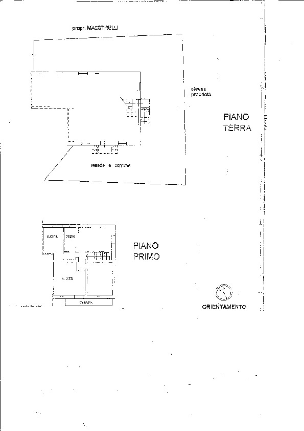 Planimetria 1/1 per rif. P/0066