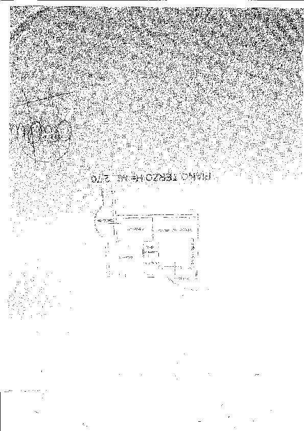 Planimetria 1/1 per rif. B/0125