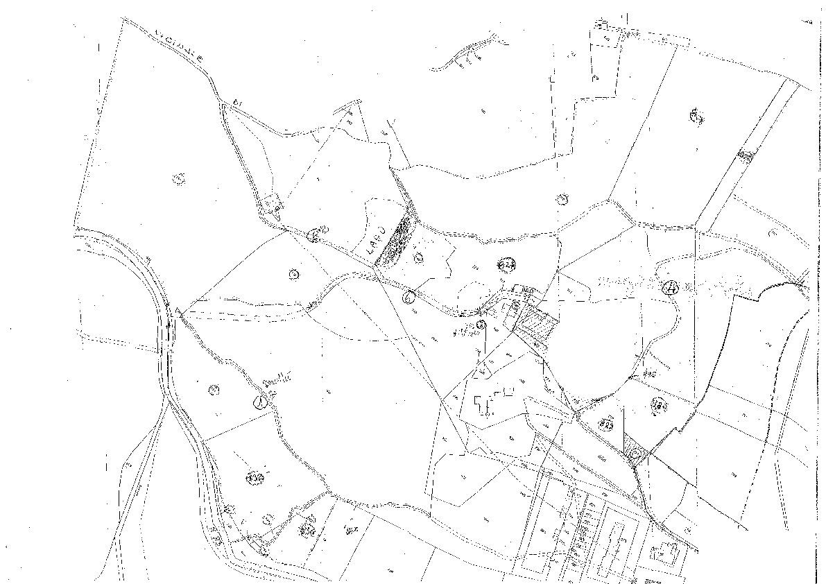Terreno agricolo in vendita, rif. T201 (Planimetria 1/1)