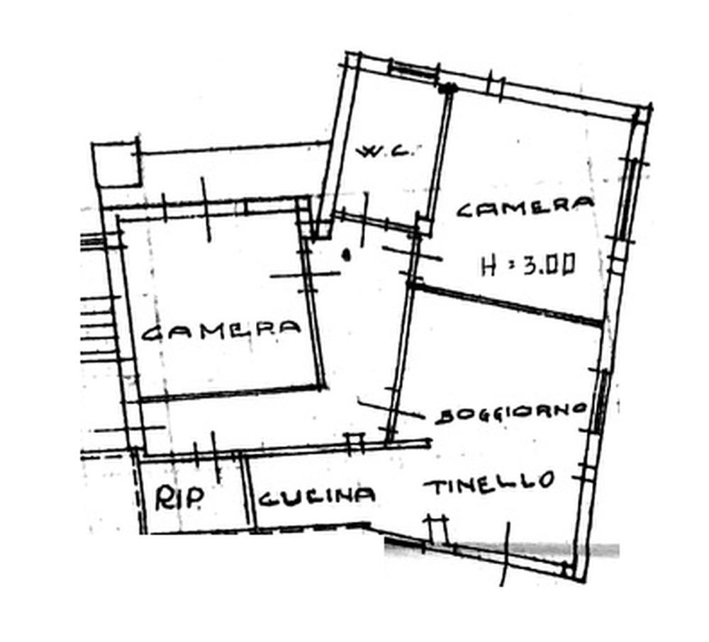 Planimetria 1/1 per rif. 8842