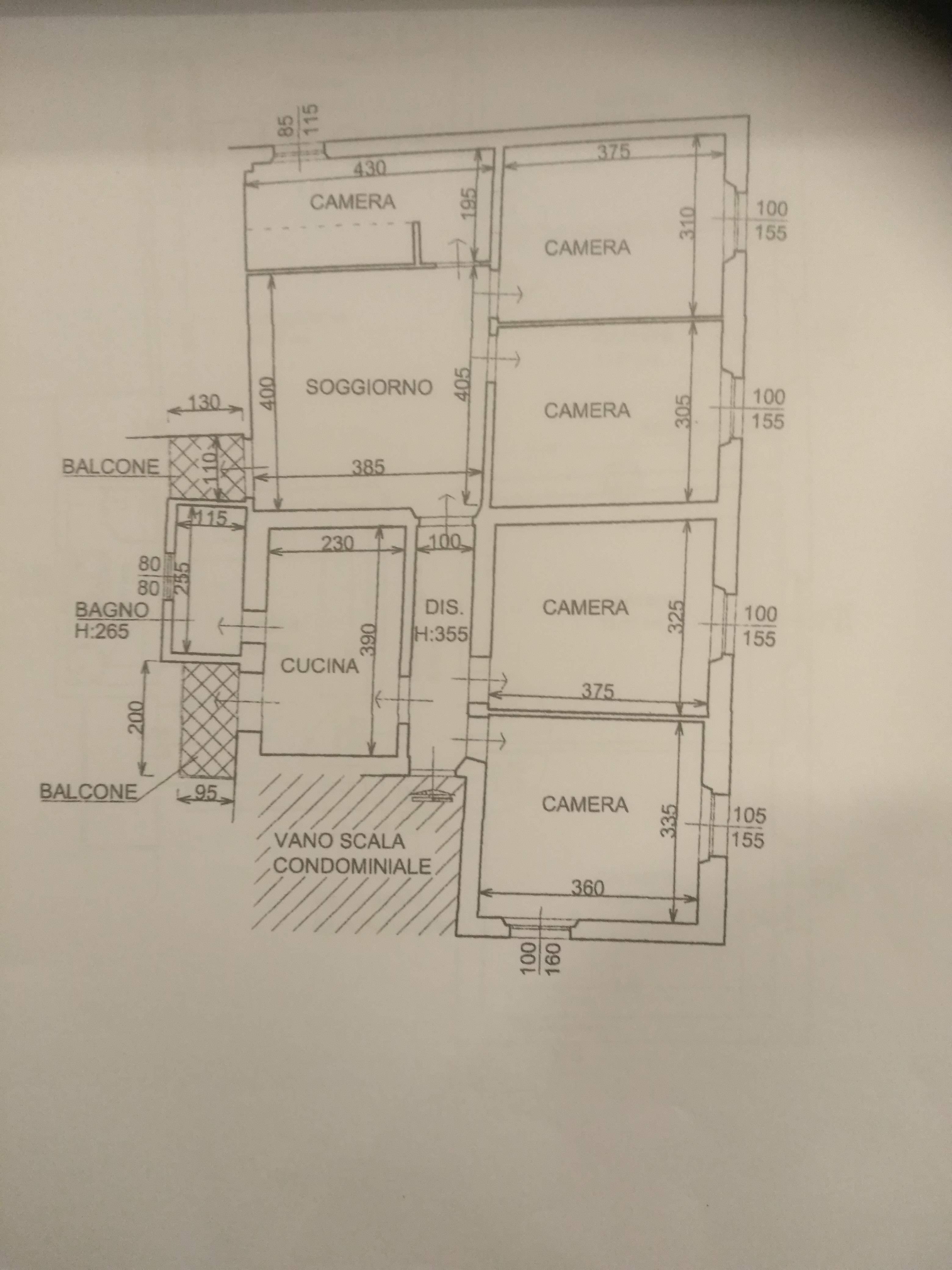 Planimetria /1 per rif. sd5568v
