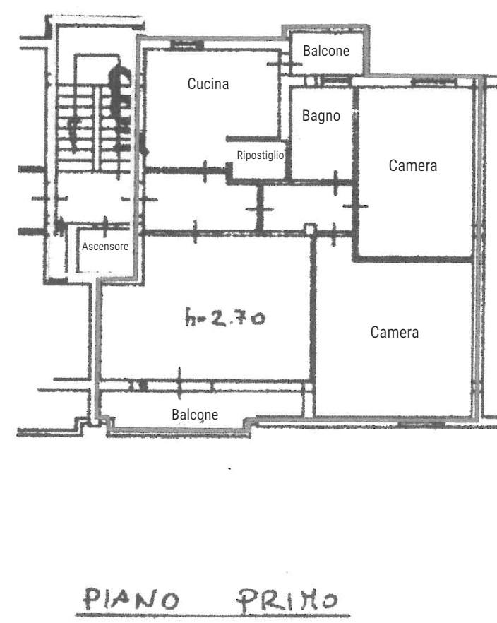 Planimetria 1/1 per rif. S2234