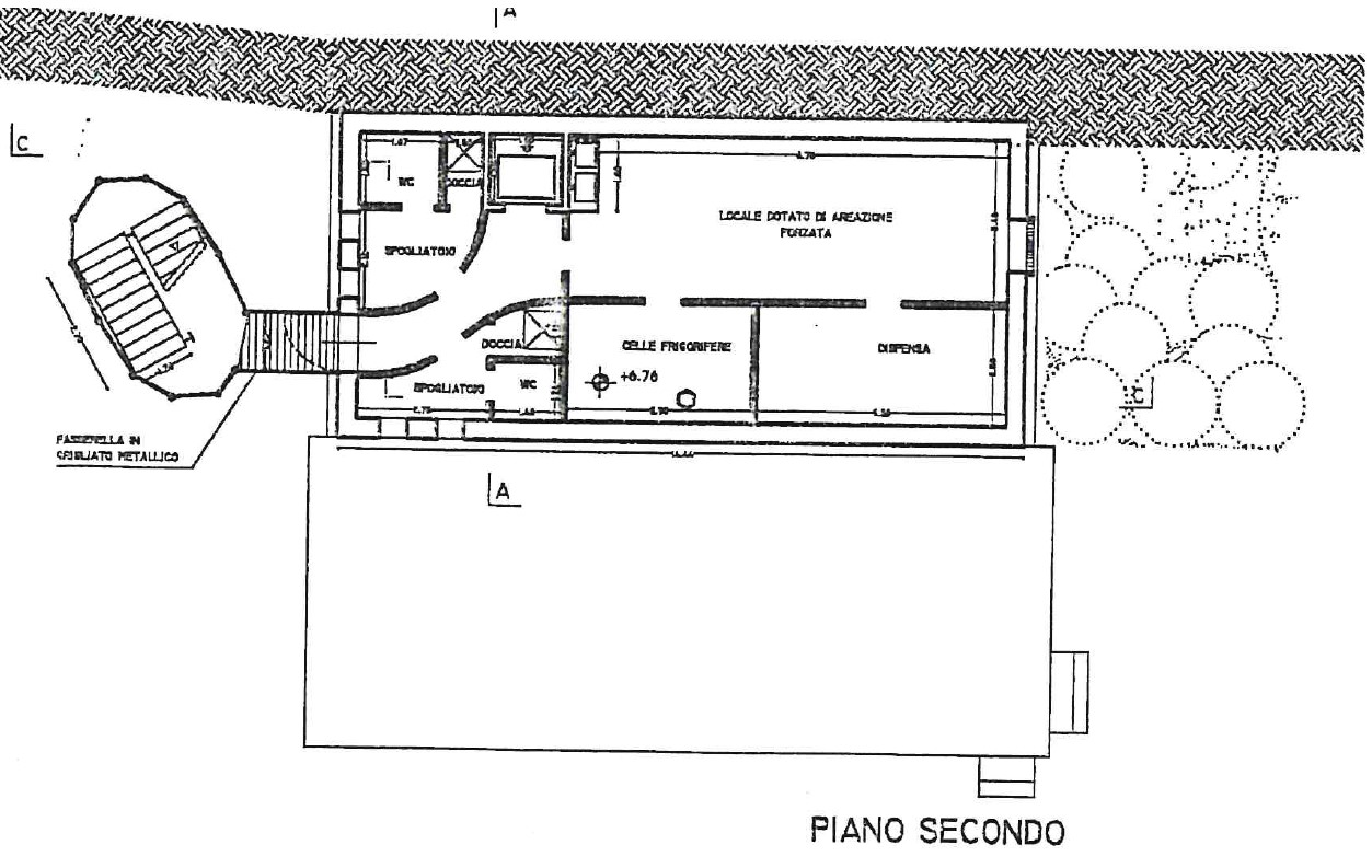 Planimetria 3/5 per rif. S2301