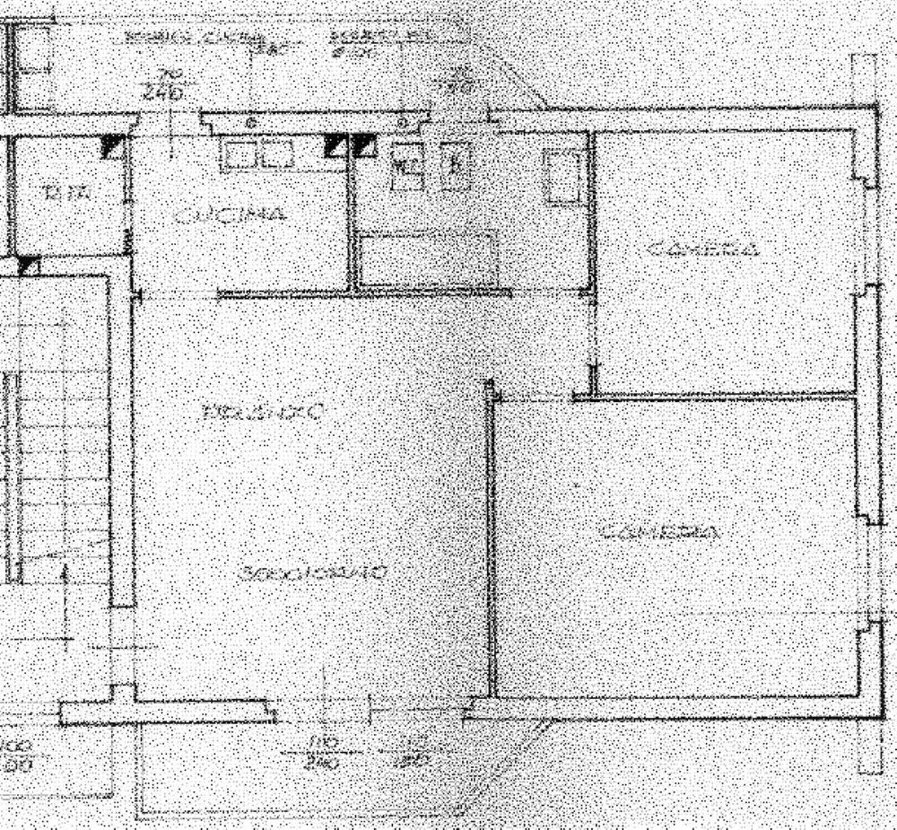 Planimetria 1/1 per rif. C341