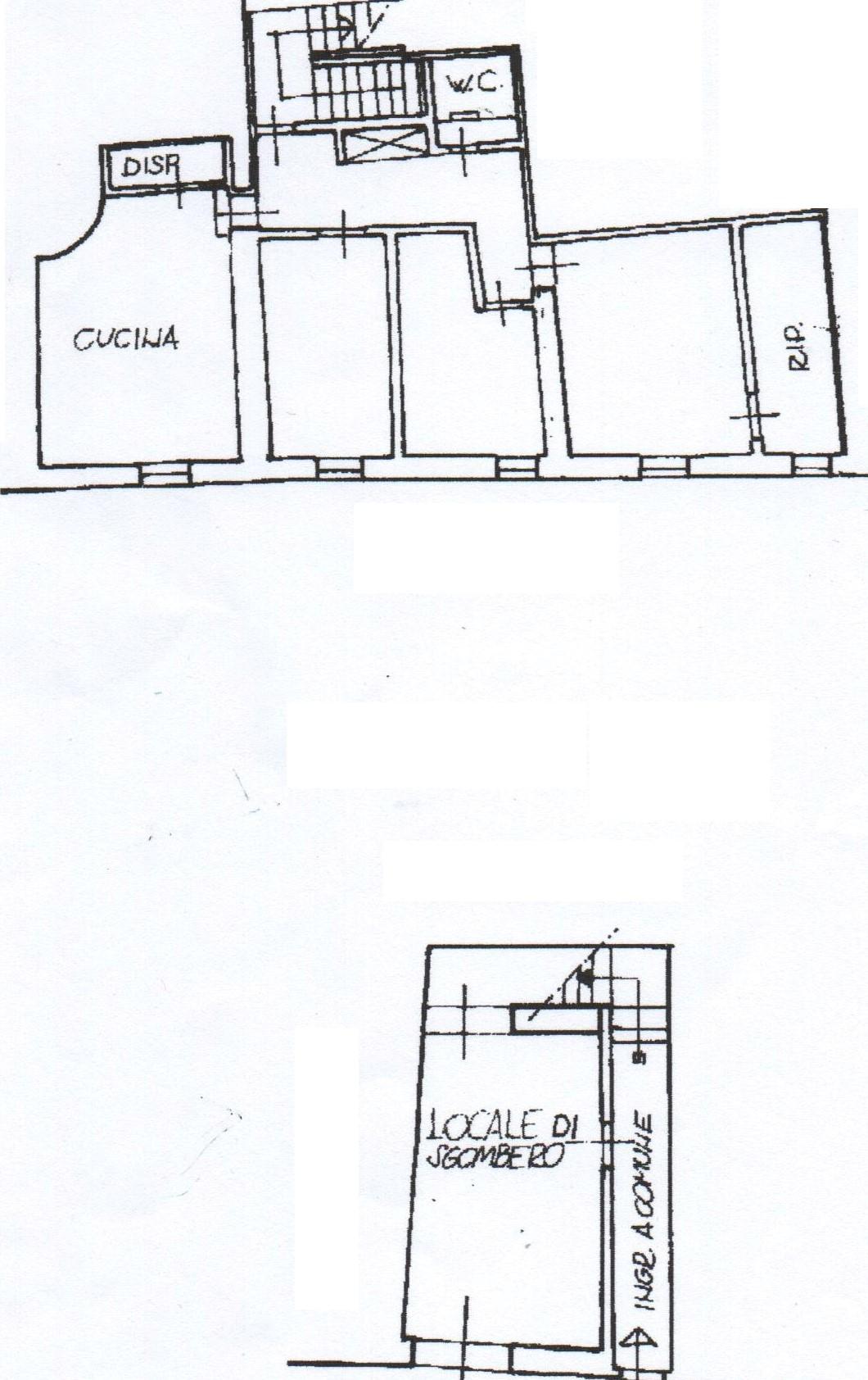 Planimetria 1/1 per rif. C316