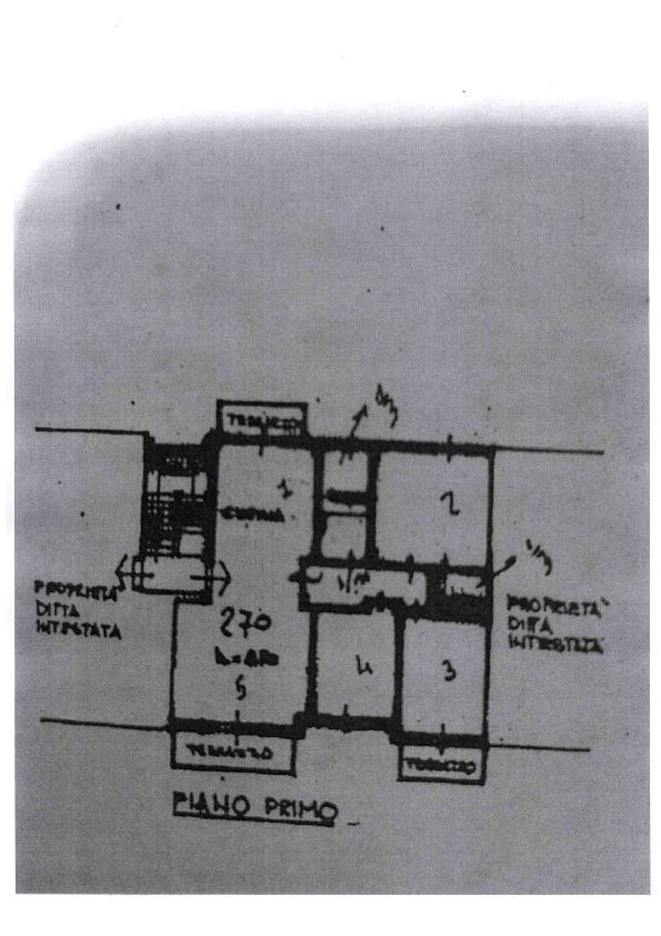 Planimetria 1/1 per rif. AE1314V