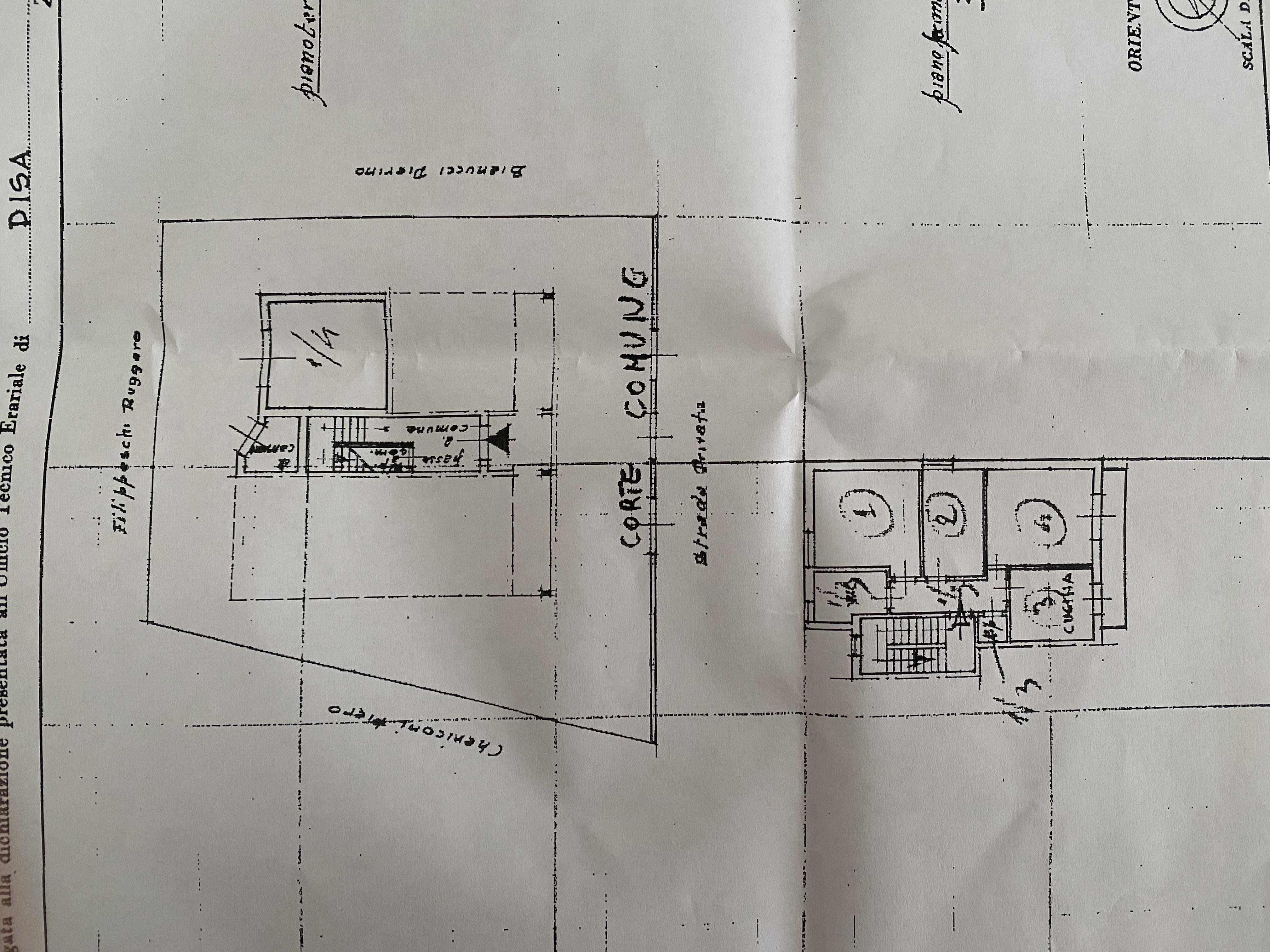 Planimetria 1/1 per rif. AE1316V