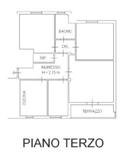 Planimetria /2 per rif. S559