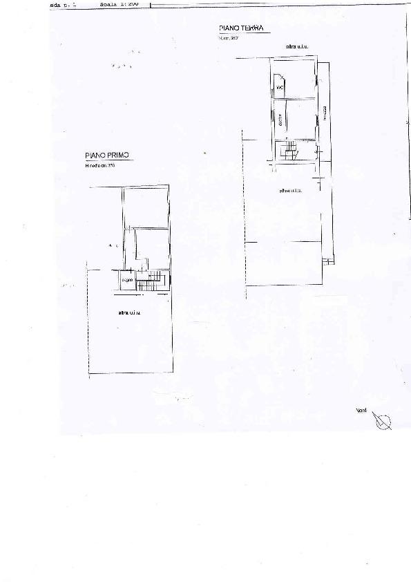Planimetria 1/1 per rif. C1239