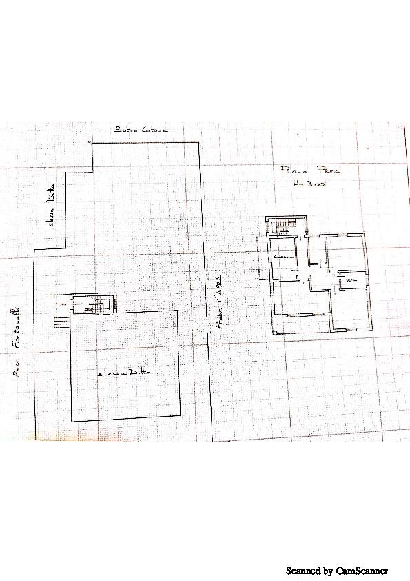 Planimetria 1/1 per rif. 1342