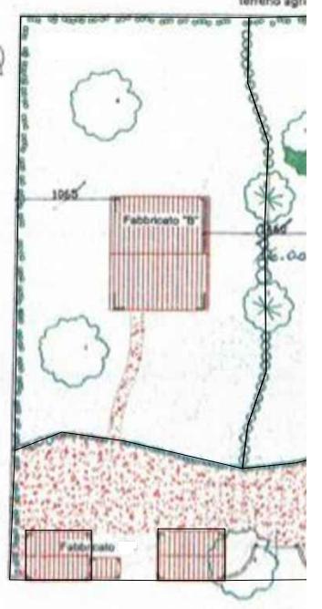 Planimetria 1/2 per rif. MN361