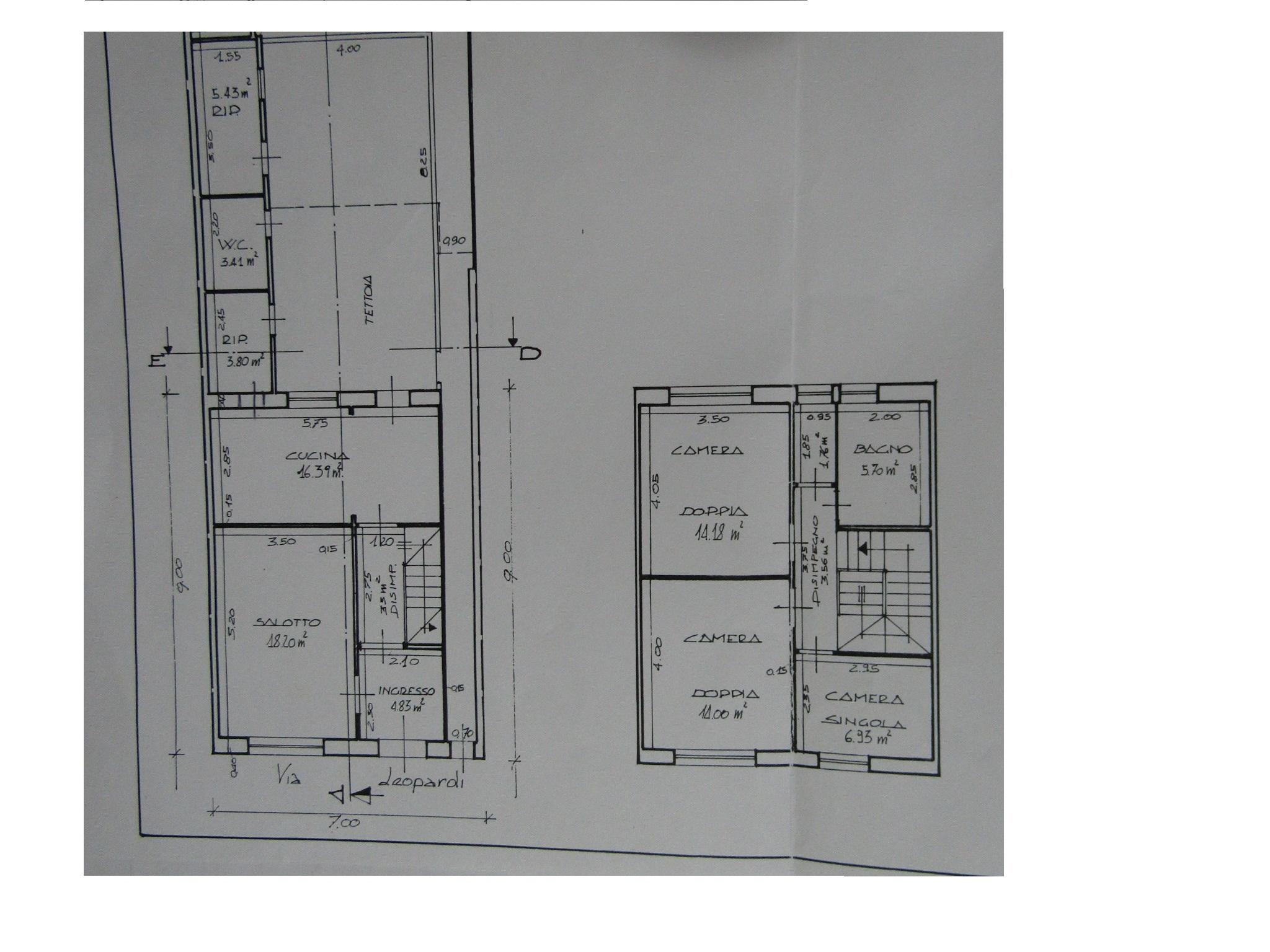 Planimetria 1/1 per rif. 3436V3