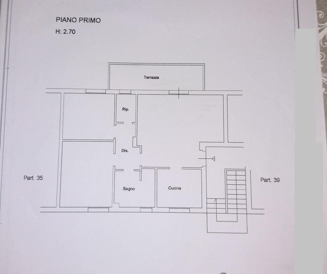 Planimetria 1/1 per rif. C1279
