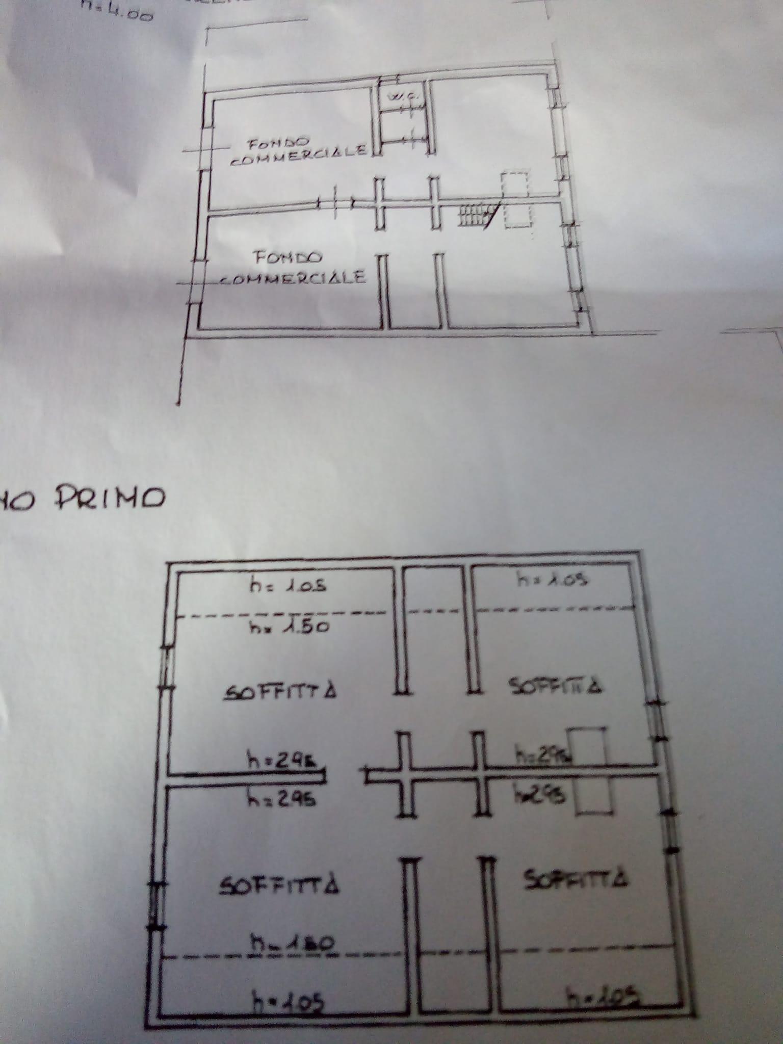 Planimetria 1/1 per rif. C1645