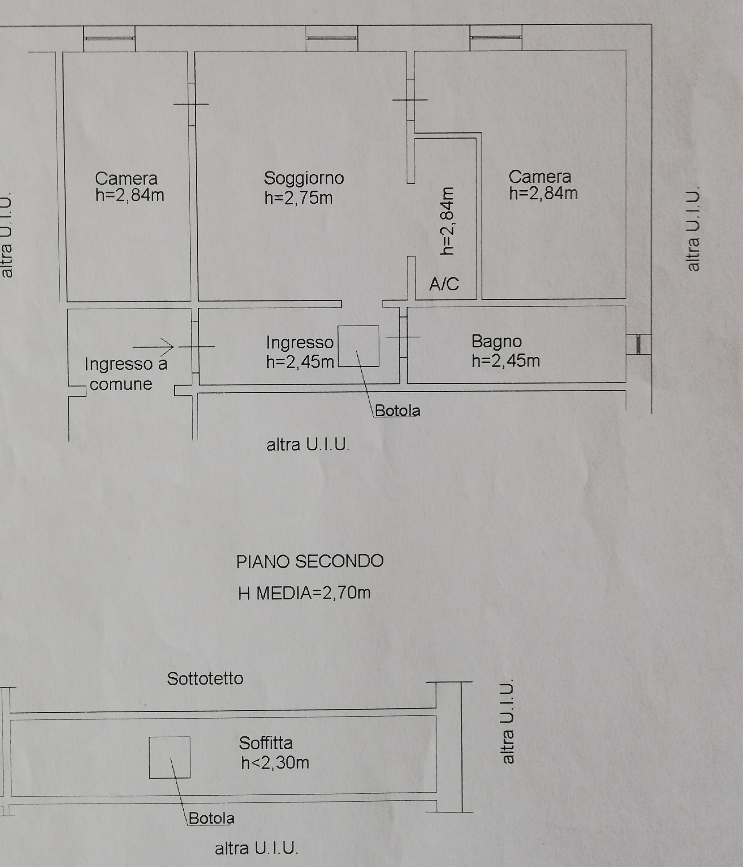 Planimetria 1/1 per rif. C1659