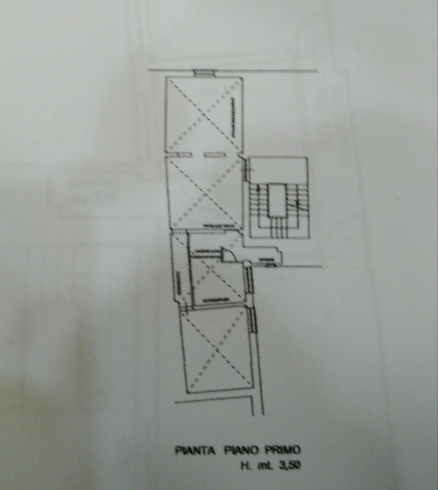 Planimetria 1/1 per rif. MQ-2806