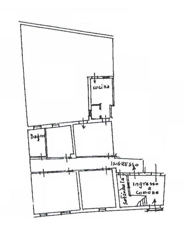 Planimetria 1/1 per rif. TL1911711