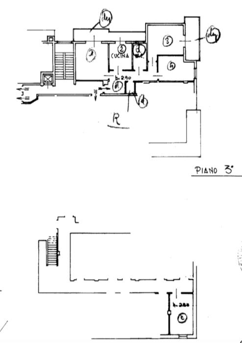 Planimetria 1/1 per rif. FED-006