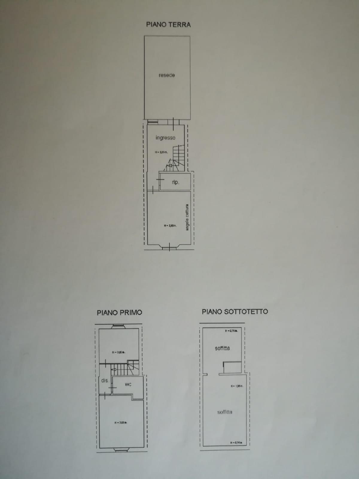 Planimetria 1/1 per rif. 809