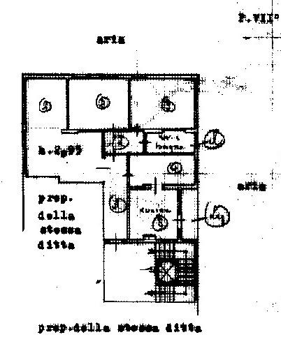Planimetria 1/1 per rif. 3114