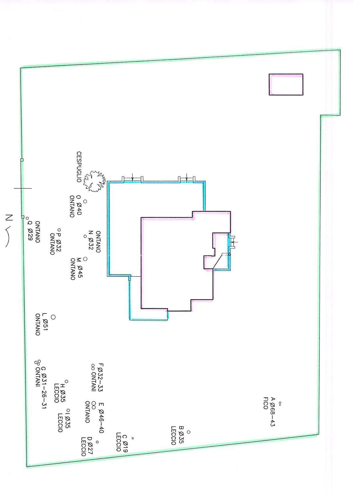 Planimetria 1/5 per rif. B231