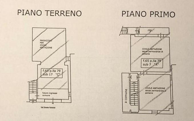 Planimetria 1/1 per rif. 2274