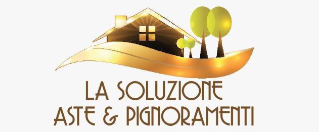 logo La Soluzione - ASTE