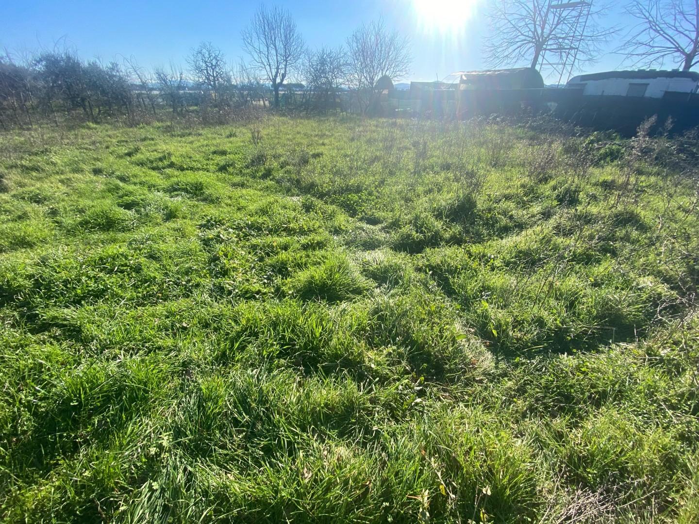 Terreno agricolo in vendita, rif. T002