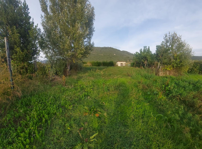 Terreno agricolo in vendita a Vecchiano (PI)