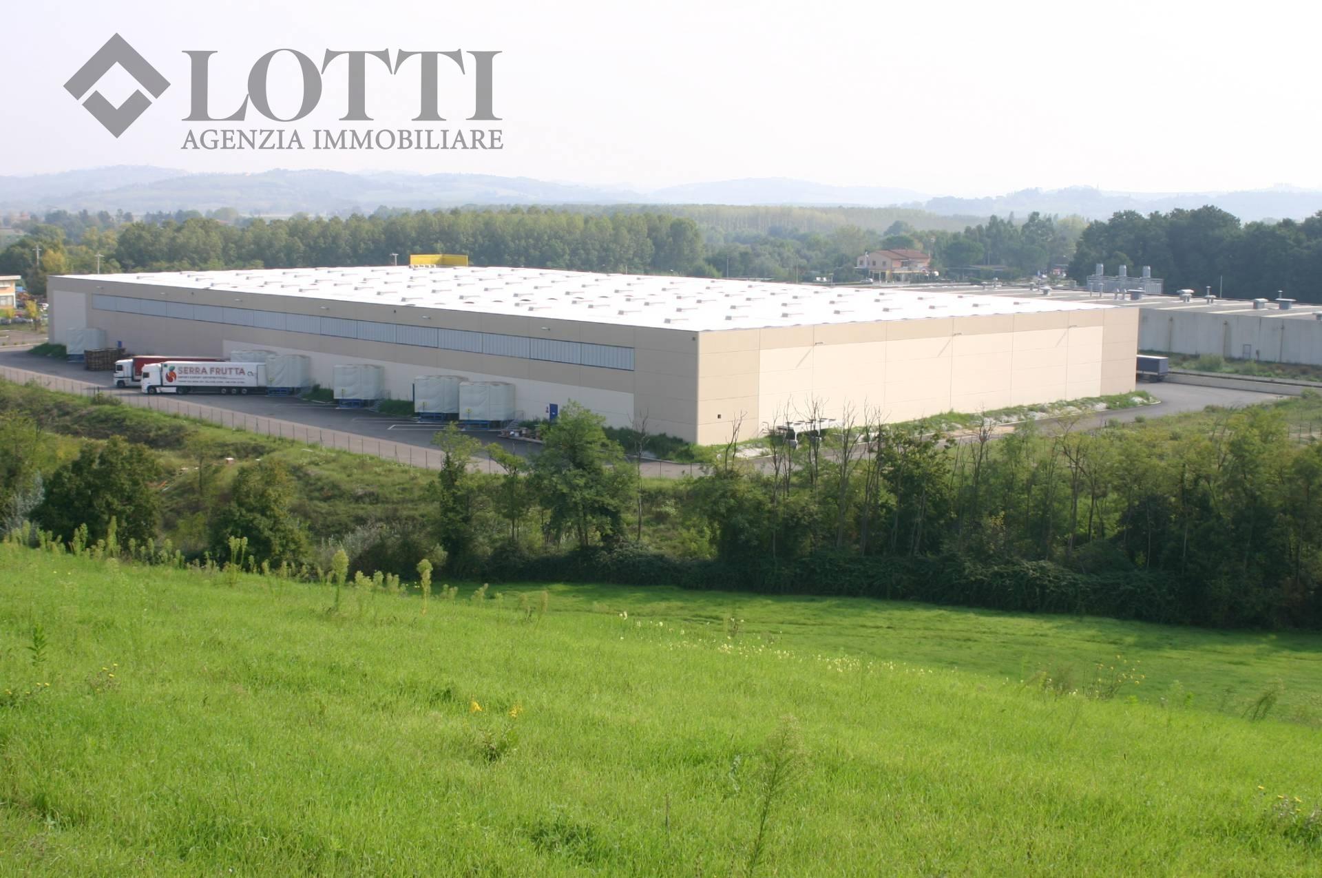 Capannone industriale in vendita a Selvatelle, Terricciola (PI)