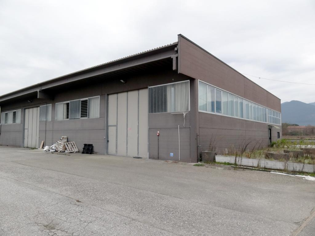 Industrial depot for rent in Bientina (PI)