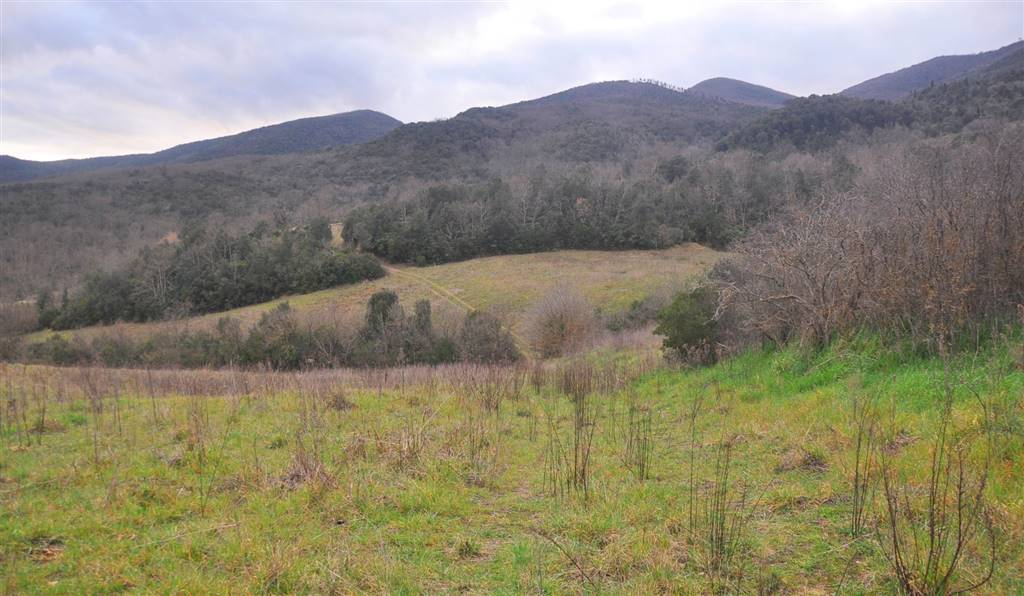 Terreno agricolo in vendita a Montecatini Val di Cecina (PI)