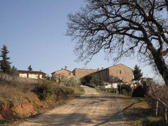 Agriturismo in vendita a Murlo (SI)